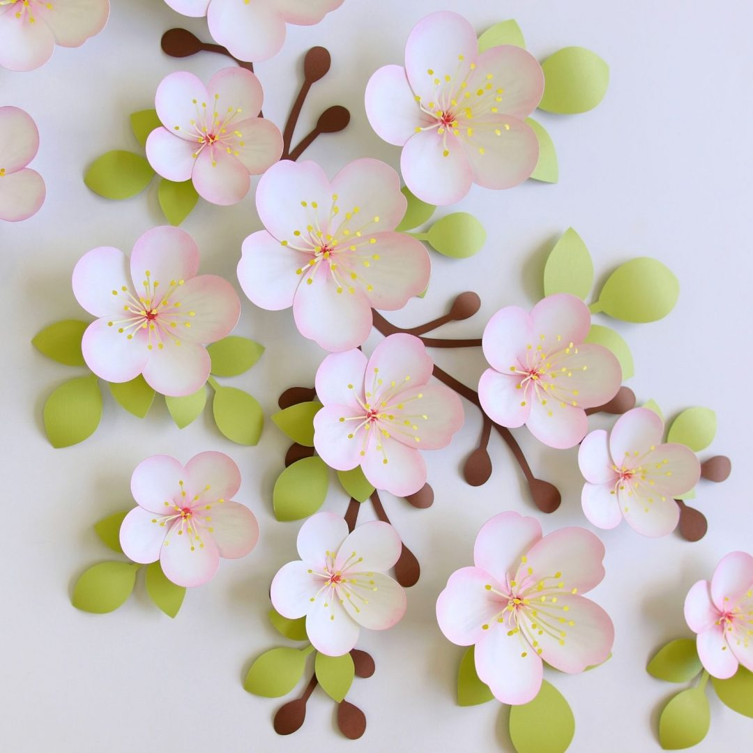 Apple blossom svg